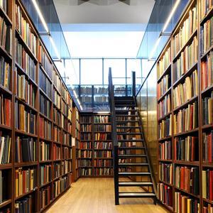 Библиотеки Екимовичей