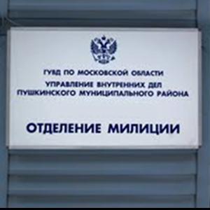 Отделения полиции Екимовичей